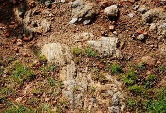 Le terroir du cru CLISSON du Domaine de la Grenaudière