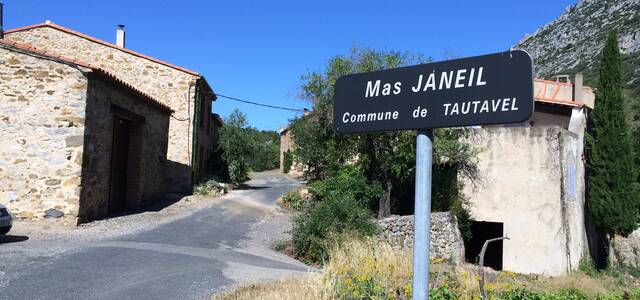 MAS JANEIL