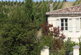 Vignoble du Domaine de Chastelet