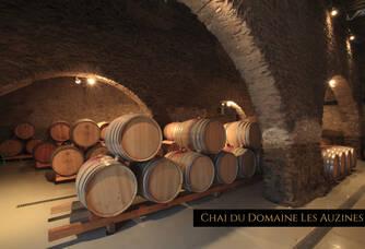 Chai du Château Cazal Viel