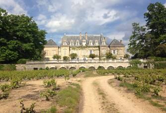 Vue du Château de Nervers depuis les vignes