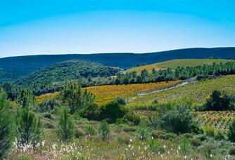 Panorama du Domaine Rimbert