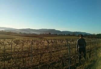 Martial dans les vignes du Domaine de la Ferme des Arnaud
