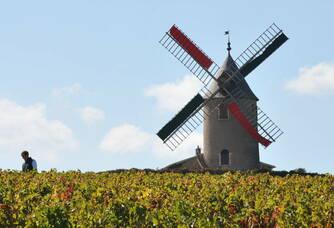 Le moulin du domaine Labruyère